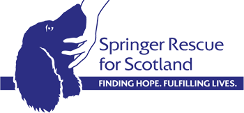 Springer Rescue Scotland